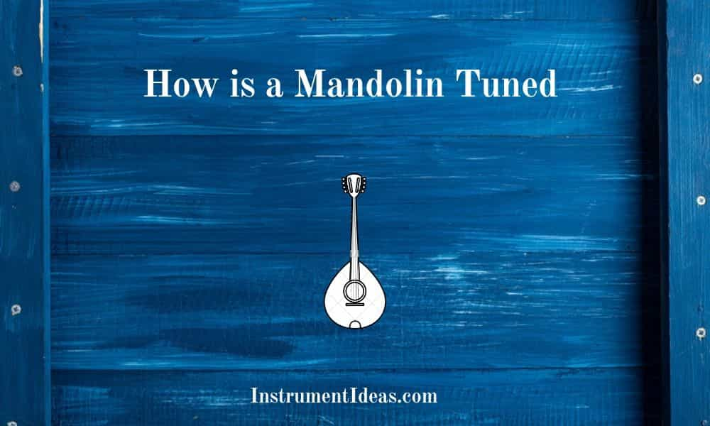 How is a Mandolin Tuned