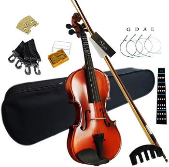 Aliyes Solid Wood Violin