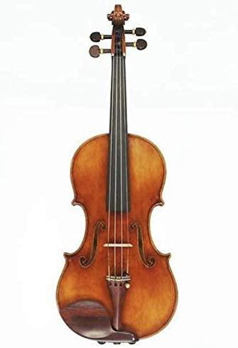 D Z Strad Violin Model 800