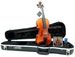 D'Luca Violin, 4-4 (PROJBV44)